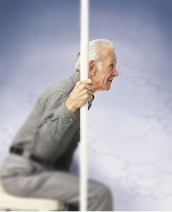 Picture of Safe-T Pole Guardian  Pole Only