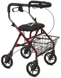 Picture of Evolution Walker, Horizon Series *** DISCONTINUED ***